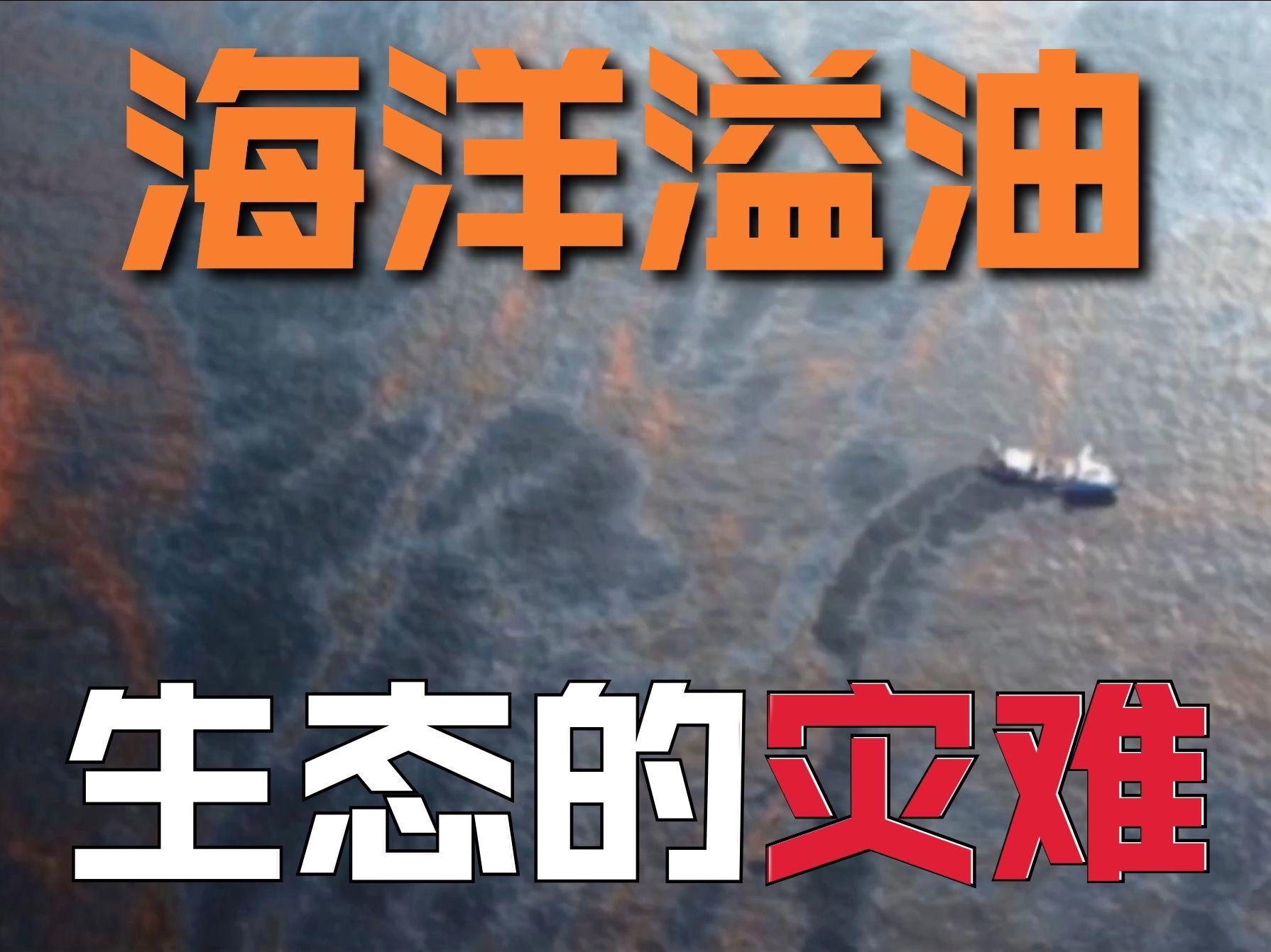 海洋溢油的生态破坏