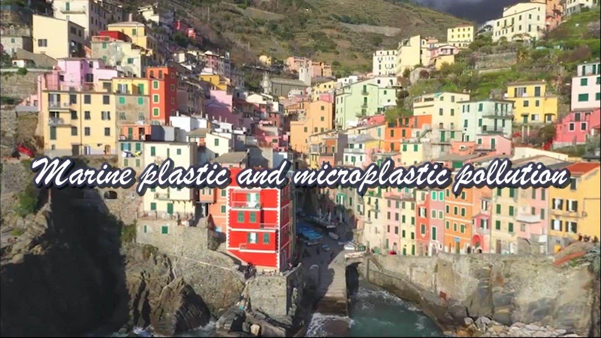 海洋塑料与微塑料污染